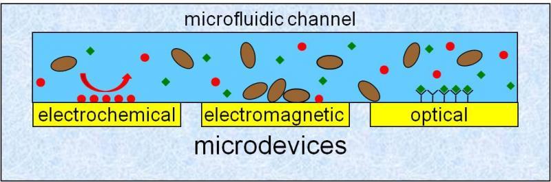 principes de transduction multi physiques de l'équipe MICA