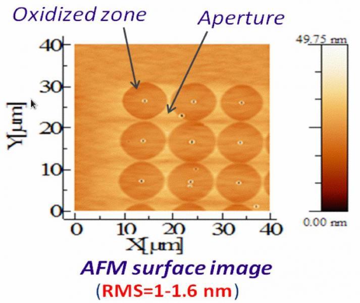 Structure test du capteur de CH4 composée de guides optiques diffractifs juxtaposés (le pas des réseaux de diffraction est égal à 1,28 µm).